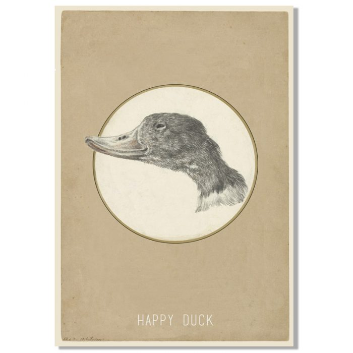 poster happy duck